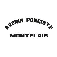 39-avenir-pongiste-montelais